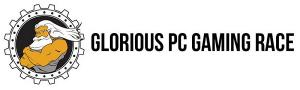 test_de_la_souris_glorious_pc_gaming_race_model_d_mate