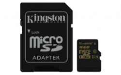 kingston2_mini.png